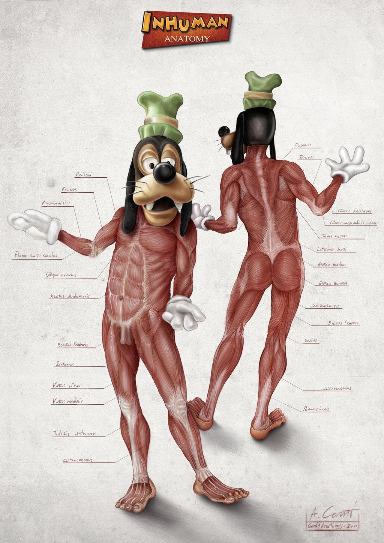 Alessandro Conti: анатомия диснеевских персонажей.