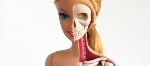 Анатомические подробности Барби.