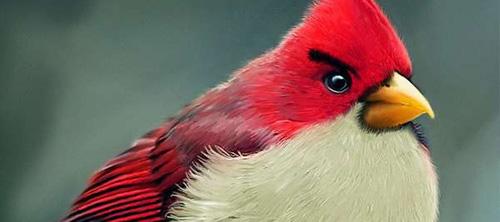 Angry Birds в реальности.