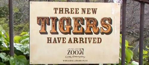 Auckland Zoo: дефекация от страха.