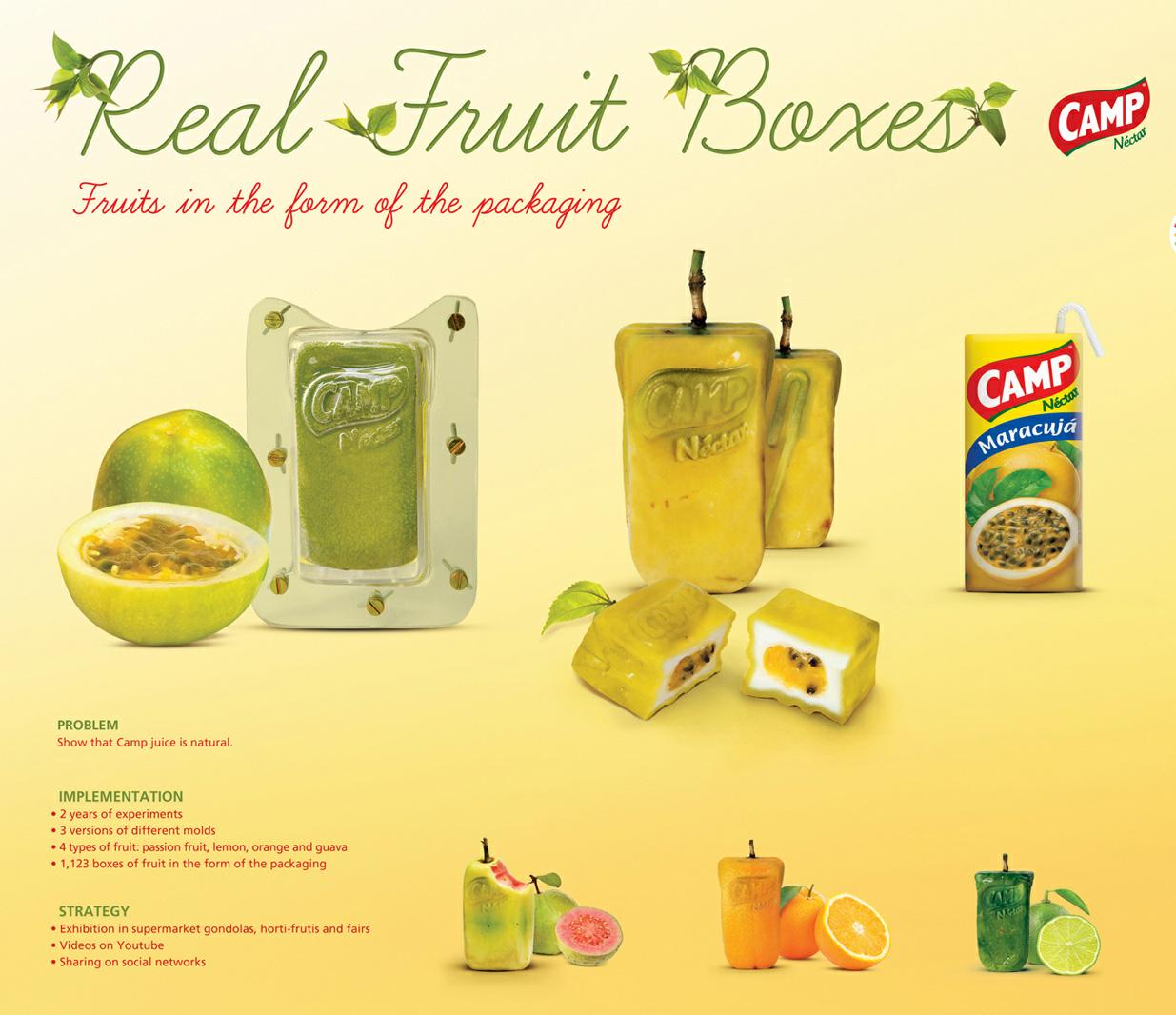 Квадратные фрукты для Camp.
