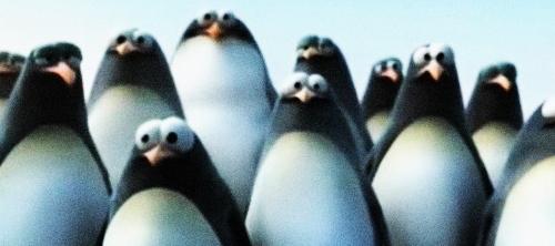 De-Lijin: пингвины-путешественники.