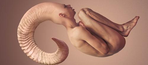 Метаморфозы Jonathan Ducruix.