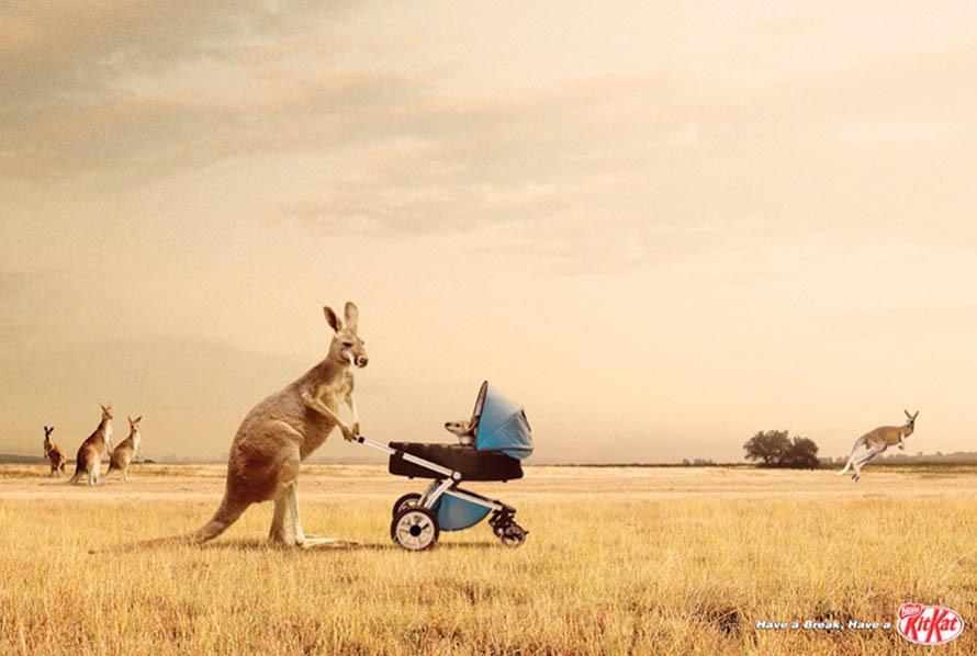 Kit Kat Перерыв для кенгуру