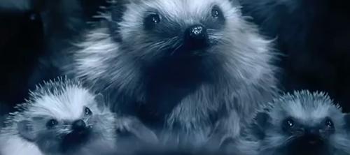 Животные в рекламе автомобилей.