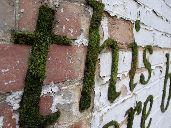 Экологичное граффити. Anna Garforth (Анна Гэрфорт).