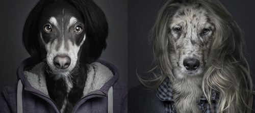 Sebastian Magnani и его собаколюди.