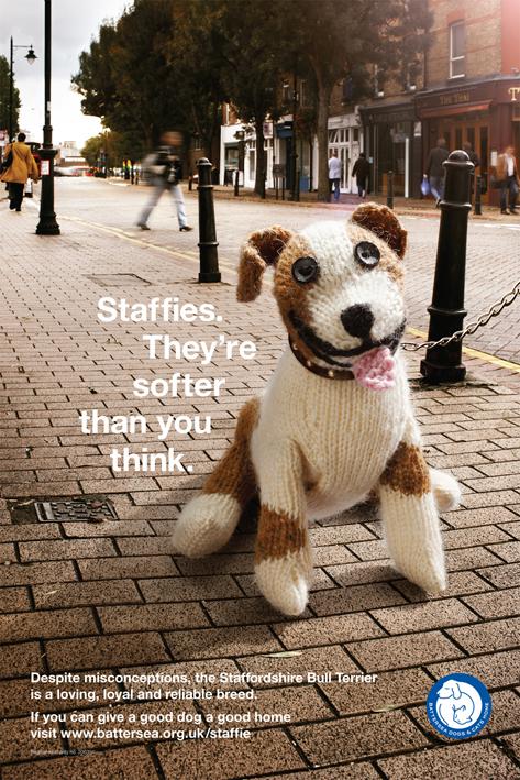 Стаффорды мягче, чем вы думаете.