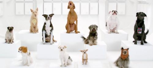 Тизер рекламного ролика Volkswagen для Super Bowl 2012.